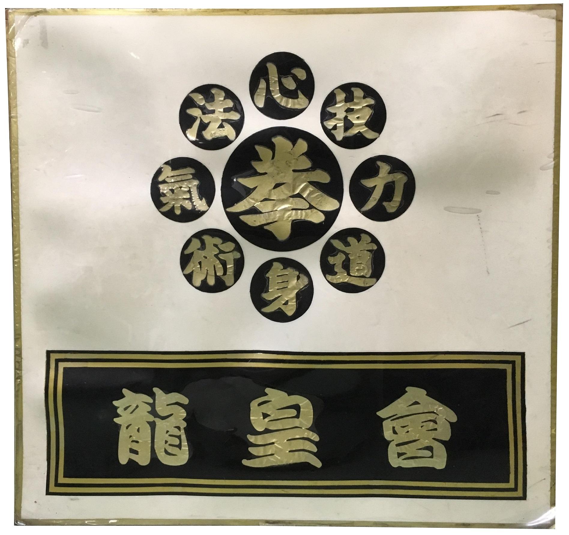 日本拳法 龍皇會