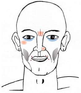 顔診法・望診法